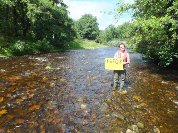 The survey site at Mains of Newton. Holding the site board is Kirsteen Macdonald our seasonal summer assistant. With 3 years previous experiance with the Kyle of Sutherland fishery board Kirsteen was able to hit the ground running and has been a very able assistant. Kirsteen's father is a ghilie on the Oykel so she is well versed in salmon matters.