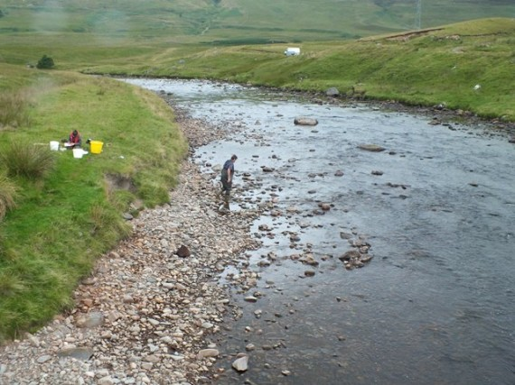 Salon fry count survey site at Sherramore Lodge. Doubt if anone would disagree that this is the habitat that a salmon fry's dreams are made of.