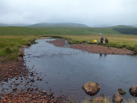 The uppermost site at Shesgnan Bothy. It is not a big river up here but that riffle was perfect salmon fry habitat