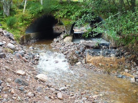 The downstream side of the culvert before the riverbed was reinstated