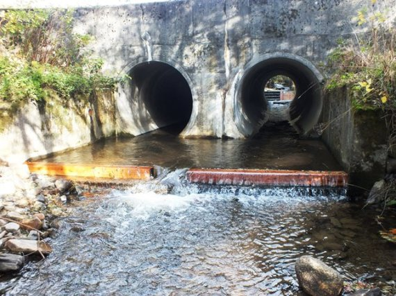 Timber baulks to create depth on the formerly shallow concrete bridge apron ont he downstream side of the culverts