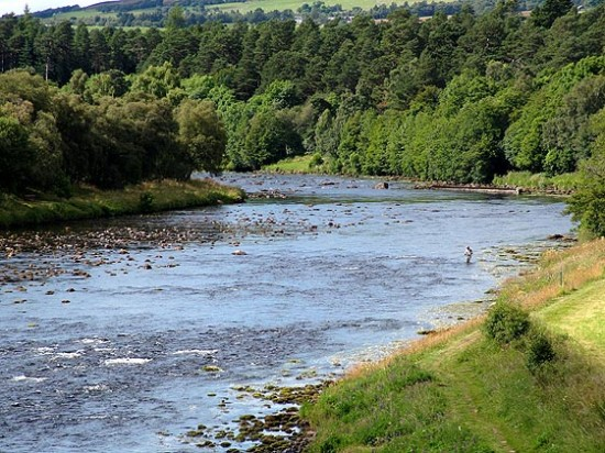Strathspey Angling Improvement Association