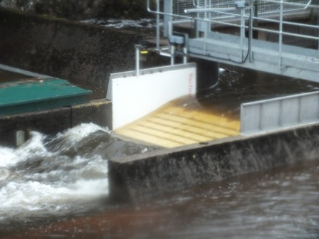 Close up of the Spey Dam counter. Looking forward to finding out what its results are.