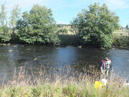 The electrofishing site at Balnaan (Balnain). The river here is wide and shallow and the site consists of a transect across the river of about 6.5m. The same area has been surveyed eight times since 2003.