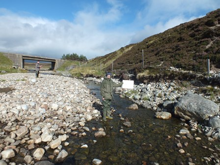 Survey site just upstream of the A9.