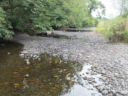 Dried up spawning channel. The transverse gravel beds are the result of annual salmon spawning. These gravel bars provide ideal incubation conditions for salmon eggs.