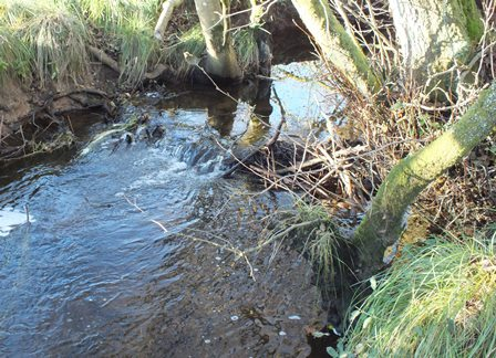 Little dam to raise water levels along a transit route.