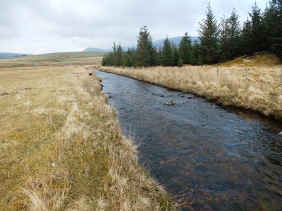 The Livet above the Blye confluence.