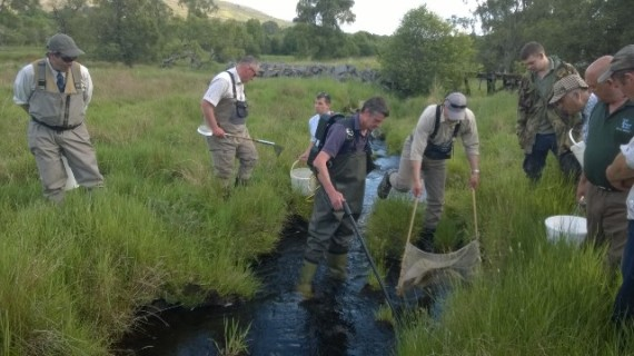 Steve assisted by the Craigellachie ghillies electrofishing in the Tommore Burn. Chris can even do it standing on one leg.