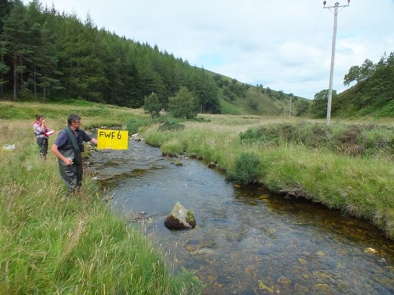 Second last site of the day. 90 salmon and trout were caught at this site.