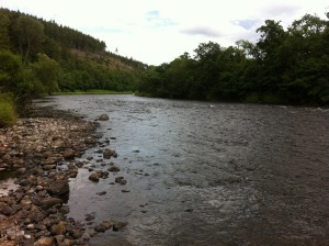 The Site on Tulchan D-Beat