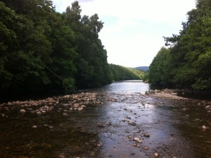 The Truim site, just below where the tributary joins the Spey