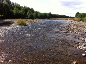 The new site at Newtonmore, lovely run/riffle