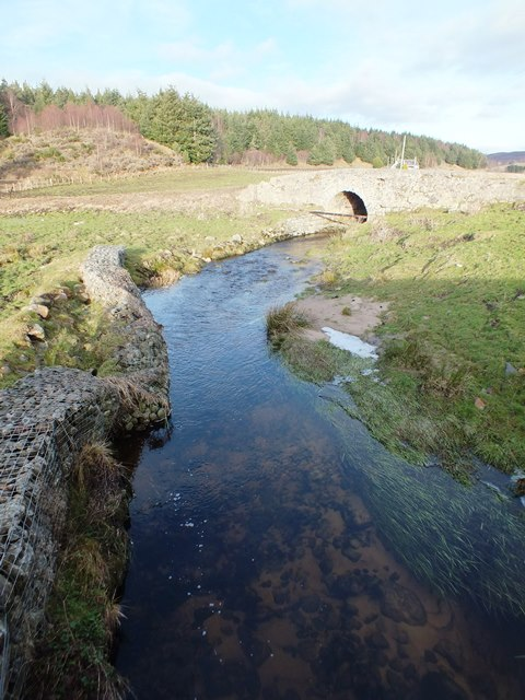 The Auchnahannet Burn upper site in 2012. This site is located immediatly upstream of the Dulnain / Carrbridge road