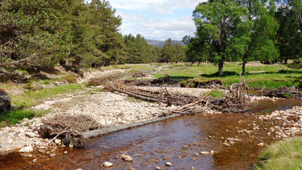 The Spey Catchment Initiative