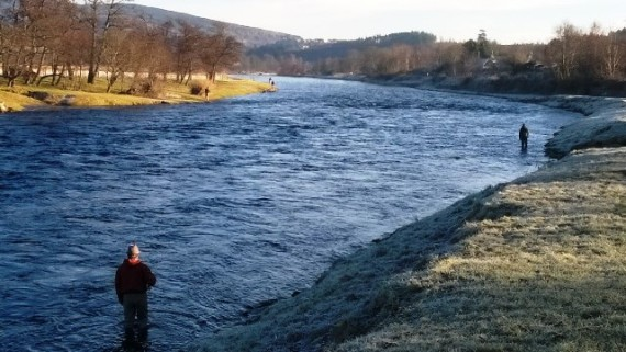 Opeing day fishers. Aberlour Angling Club on this bank and Lower Wester elchies on the left bank. It was a chilly sart but by 10am the temperature was rising quickly in the winter sunshine. Hopefully there will be a few fish caught on the opening day.