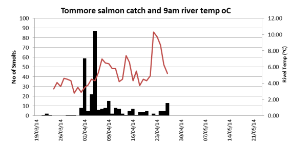 Tommore Burn trap salmon catch related to burn temperature