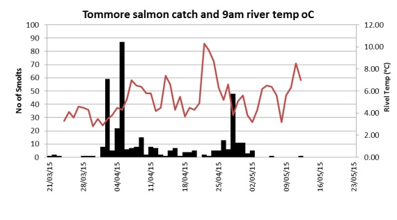 Same graph but showing water temperature along wiht the salmon catch.