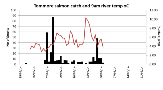 Tommore Burn water temp and salmon catch