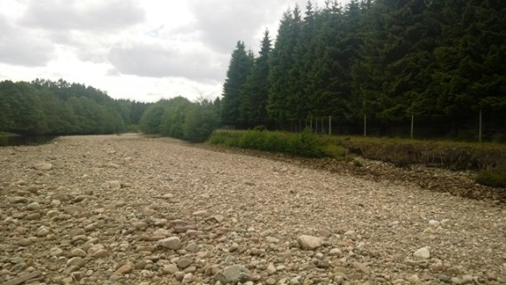 The Dulnain was severely affected by the Bertha spate last August with the hump backed bridge at Carrbridge featuring the national news. In 2012 the survey site in section 34 is now dry riverbed with the flow switching to the other side of the channel.