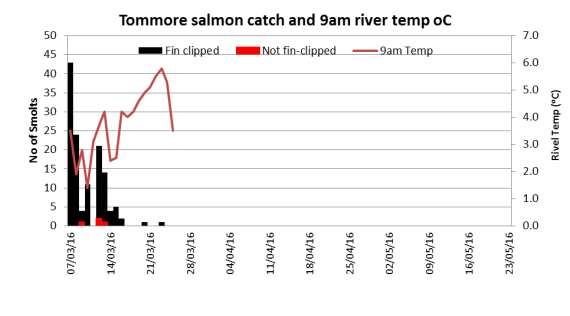 Tommore Burn cath related to 9am river temperature.